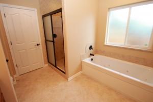 Castle Hts 909 Bishop Home- Master Bath jetted tub/shower
