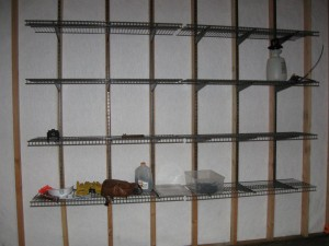 103 Columbia @ Paradise Vista-Grants Pass-inside shed wall of shelves