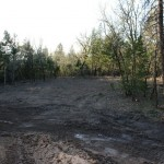 Lot 4 Paradise Vista, Grants Pass - clearing for work shop